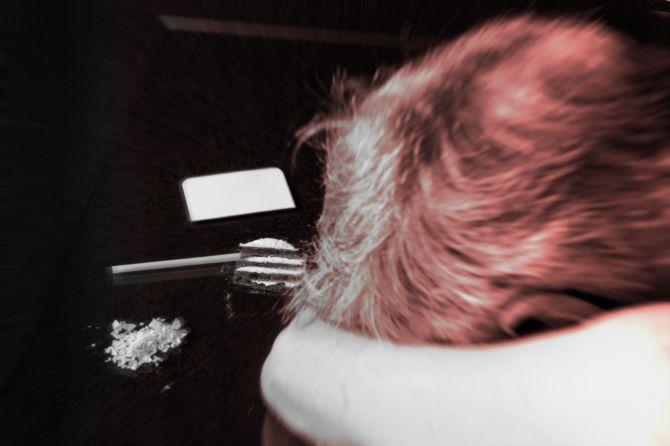 Tisch mit Kokain und Mensch am Ende