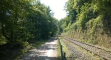 Radweg im Abschnitt der Ruhraue